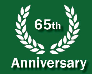 65th anniversary logo
